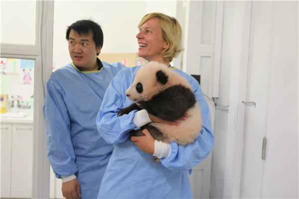 饲养员刘洋一早就到天堂动物园内的大雄宝殿为它祈福