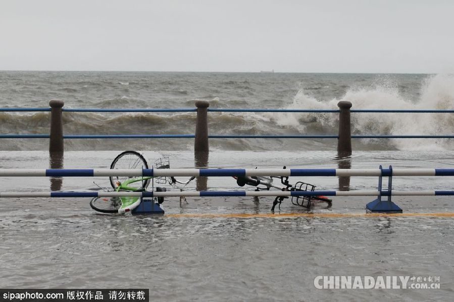 2017年6月6日,在青岛市澳门路浸泡在海水中的共享单车.