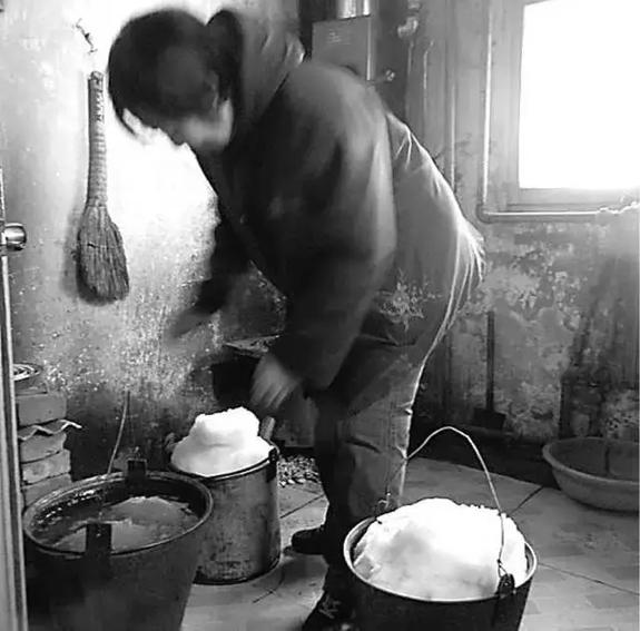 英国小哥到河北塞罕坝避暑,竟意外收获了一个美丽的故事丨好运中国