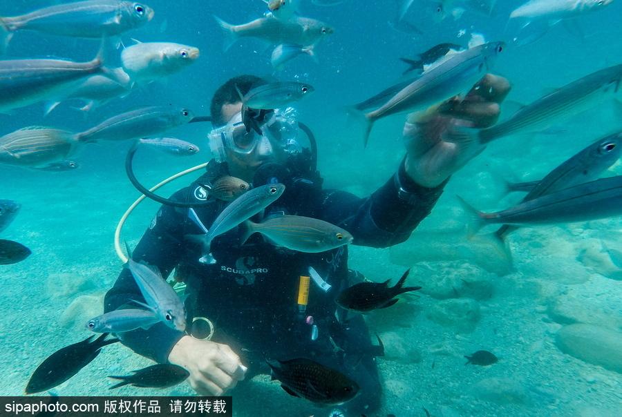 """感受地中海水下""""神秘世界"""" 土耳其凯梅尔海边潜水"""