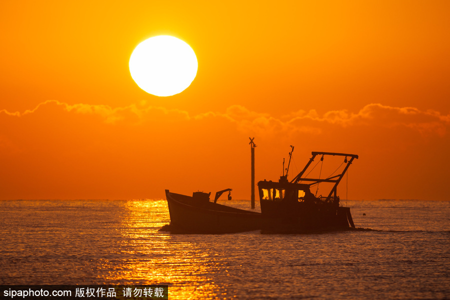 英国汉普郡海边日出 日光柔和静谧十足