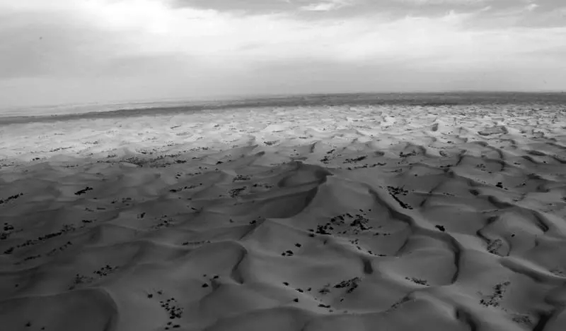 这片离北京最近的沙漠,有着三十年点沙成金的传奇史